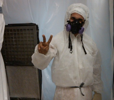 mold remediation expert